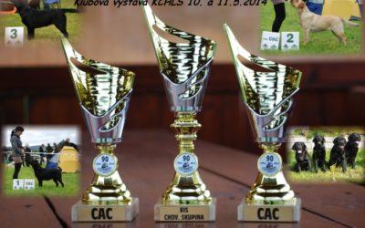 10. a 11.5. 2014 – Klubová výstava KCHLS